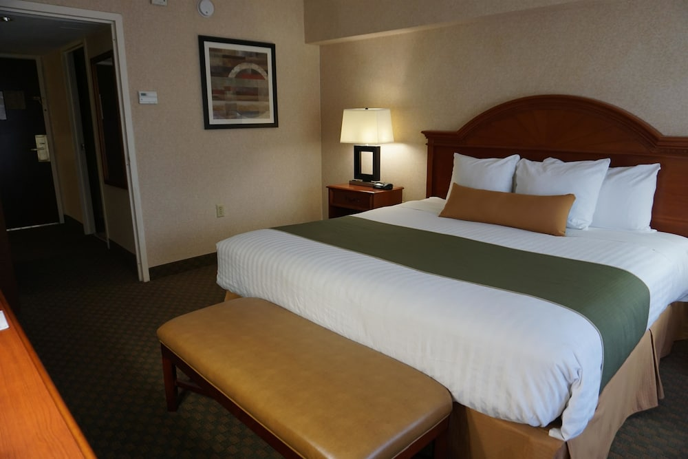 Suite : Suite, 1 King Bed, Non Smoking, Refrigerator & Microwave 43 of 156