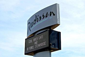 丹佛中心麗笙飯店 Radisson Hotel Denver Central