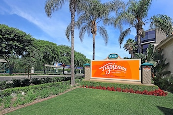 Hotel - Tropicana Inn and Suites