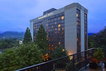 Renaissance Asheville Hotel photo