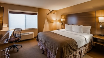 Traditional Room, 1 King Bed, City View