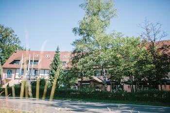 Hotel - relexa Waldhotel Schatten
