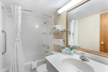 Room, 1 Double Bed, Accessible, Non Smoking (Roll-In Shower)