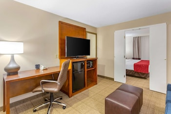 Business Room, 1 King Bed with Sofa bed
