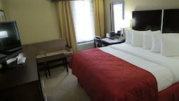 Standard Room, 1 King Bed, Accessible, Non Smoking