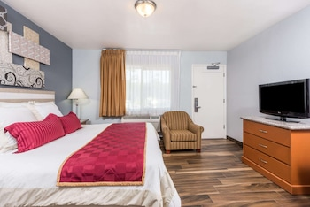 Room, 1 King Bed, Non Smoking (Shower Only)