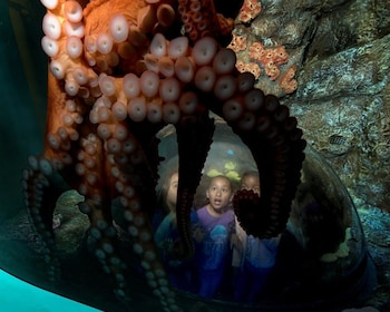 Point of Interest at Ramada Limited San Diego/Near SeaWorld in San Diego