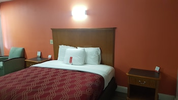Guestroom at Econo Lodge Airport in Norfolk