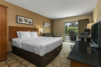 Standard Room, 1 Queen Bed, Non Smoking, Ground Floor, Pet Friendly