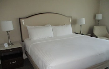 2 Room Executive Suite King Bed