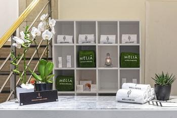 メリア マドリード プリンセサ