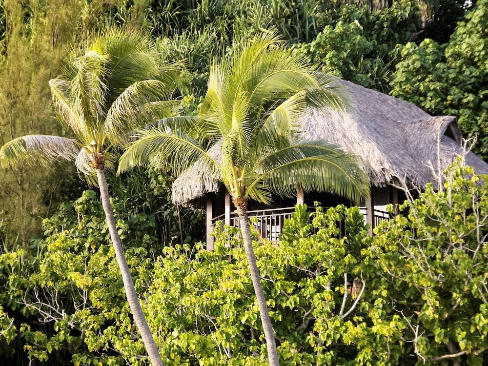 https://i.travelapi.com/hotels/1000000/20000/11900/11894/827bb55c_z.jpg