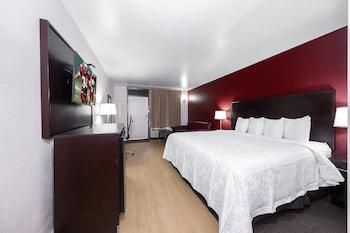 Suite, 1 King Bed (Smoke Free)