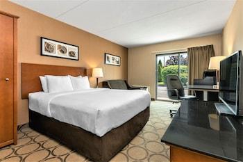 Standard Room, 1 King Bed, Non Smoking, Ground Floor