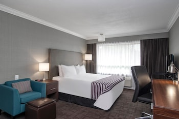 Standard Room, 1 King Bed (KNG)