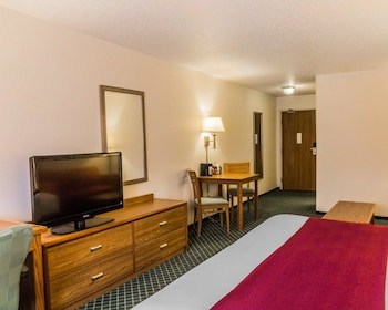 Standard Room, 1 King Bed with Sofa bed, Non Smoking, Refrigerator & Microwave