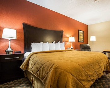 Des Moines Vacations - Quality Inn & Suites Starlite Village Conference Center - Property Image 1