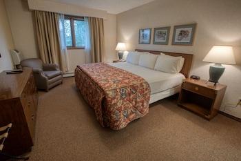 Deluxe One Bedroom King Suite