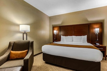 Business Room, 1 King Bed, Non Smoking (Upgrade)