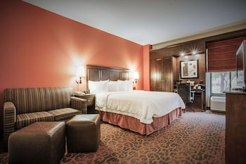 Deluxe, One King Bed, Non-Smoking