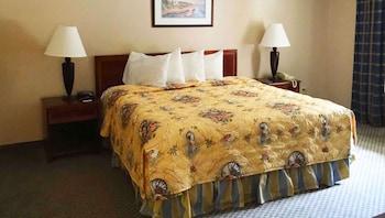 Room, 1 King Bed, Non Smoking, Refrigerator & Microwave (1 King Bed Nonsmoking)