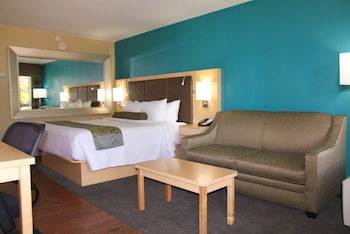 Suite, 1 King Bed with Sofa bed, Accessible, Non Smoking (with Sofabed)