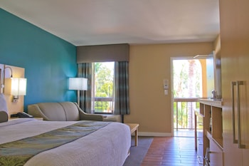Standard Room, 1 King Bed, Refrigerator & Microwave, Mountain View