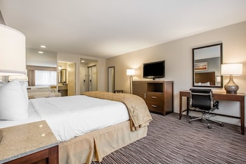 Standard Room, 1 King Bed, Accessible, Non Smoking (Roll-In Shower)