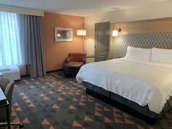 Room, 1 King Bed, Accessible, Non Smoking (Hear, Roll In Shwr)