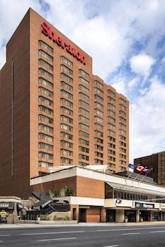 Hotel - Sheraton Hamilton Hotel