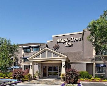 楓樹旅舍 Maple Tree Inn