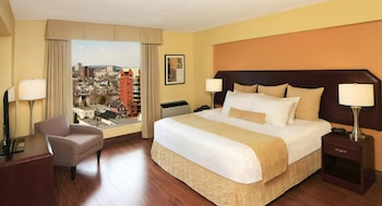 Executive Suite, 1 King Bed with Sofa bed, Non Smoking, Refrigerator & Microwave (with Sofabed)