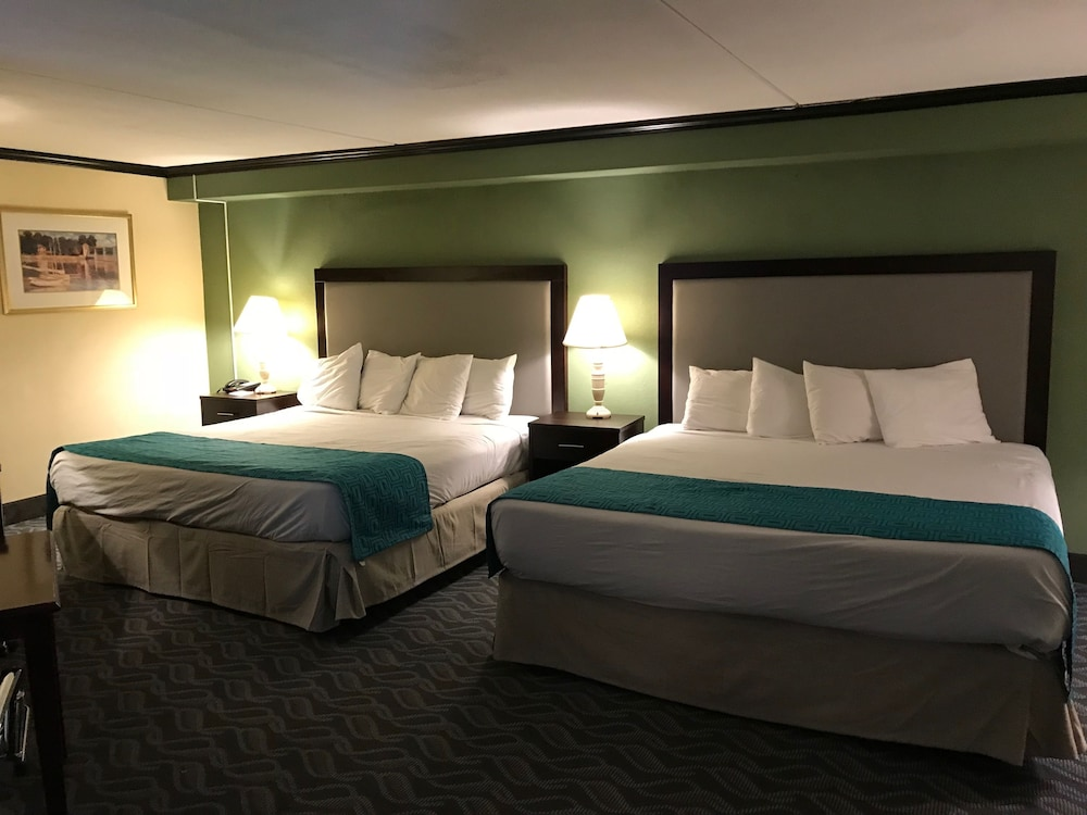 Suite : Suite, 1 King Bed 2 of 61