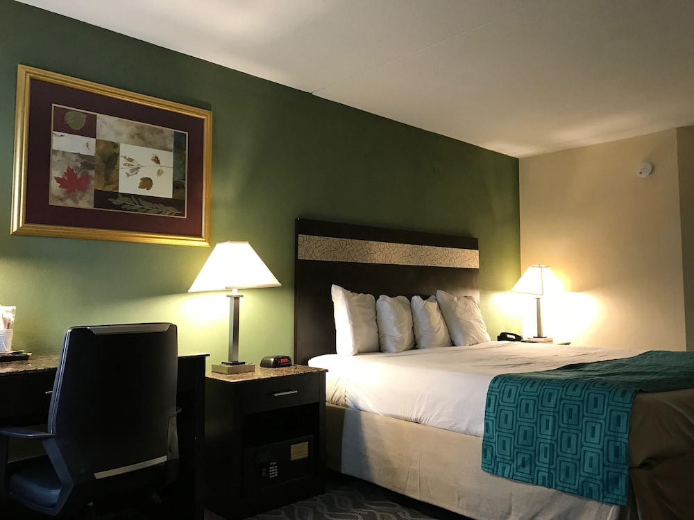 Suite : Suite, 1 King Bed 3 of 61