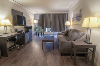 Suite, 1 Queen Bed with Sofa bed, Non Smoking (with Sofabed)