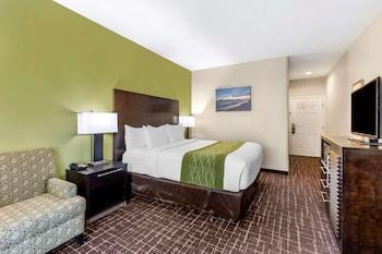 Deluxe Room., 1 King Bed with Sofa Bed, Non Smoking