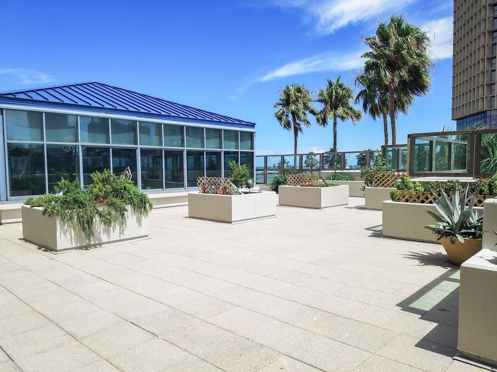 Corpus Christi Car Rentals Airport