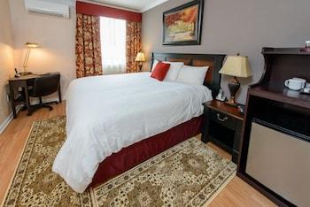 Standard Room, 1 King Bed, Refrigerator
