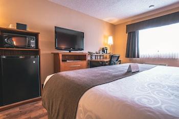 Standard Room, 1 Queen Bed, Non Smoking (Not pet friendly)