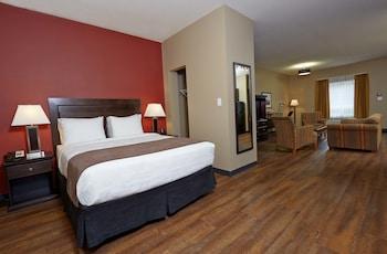 Room, 1 Queen Bed, Non Smoking (Efficiency, Pet Friendly)