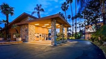 Hotel - Best Western Pine Tree Motel