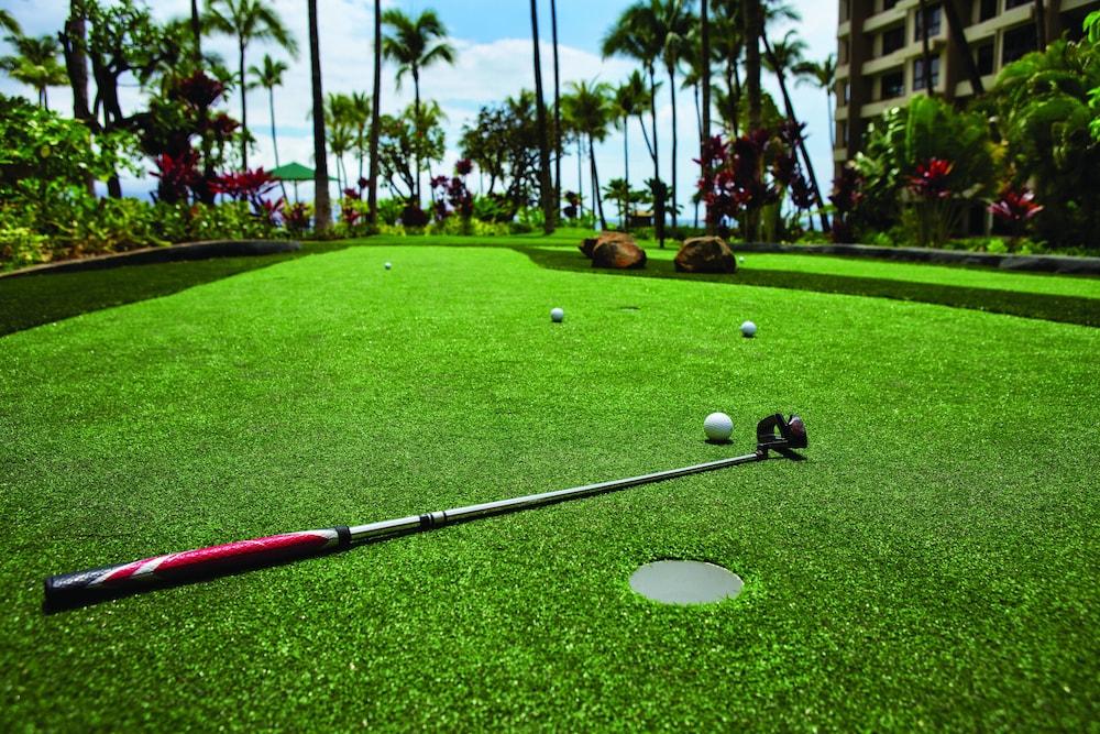 메리어츠 마우이 오션 클럽 - 라하이나 & 나필리 타워스(Marriott's Maui Ocean Club - Lahaina & Napili Towers) Hotel Image 29 - Miscellaneous