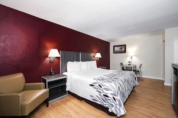Superior Room, 1 King Bed, Non Smoking