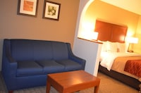 Suite, 1 King Bed with Sofabed, Non Smoking