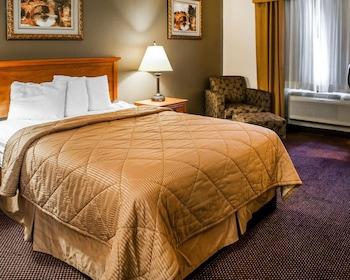 Rodeway Inn - Guestroom  - #0