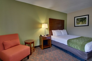 Standard Room, 2 King Beds