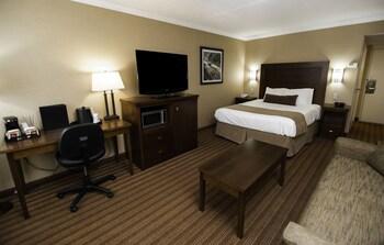 Business Room, 1 Queen Bed, Refrigerator & Microwave, Ground Floor