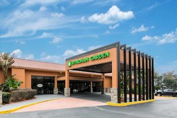 Hotel - Wyndham Garden Gainesville