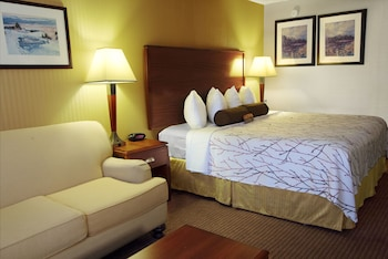 Executive Room, 1 King Bed, View (Space Needle View)