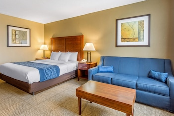 Guestroom at Comfort Inn Conference Center in Bowie